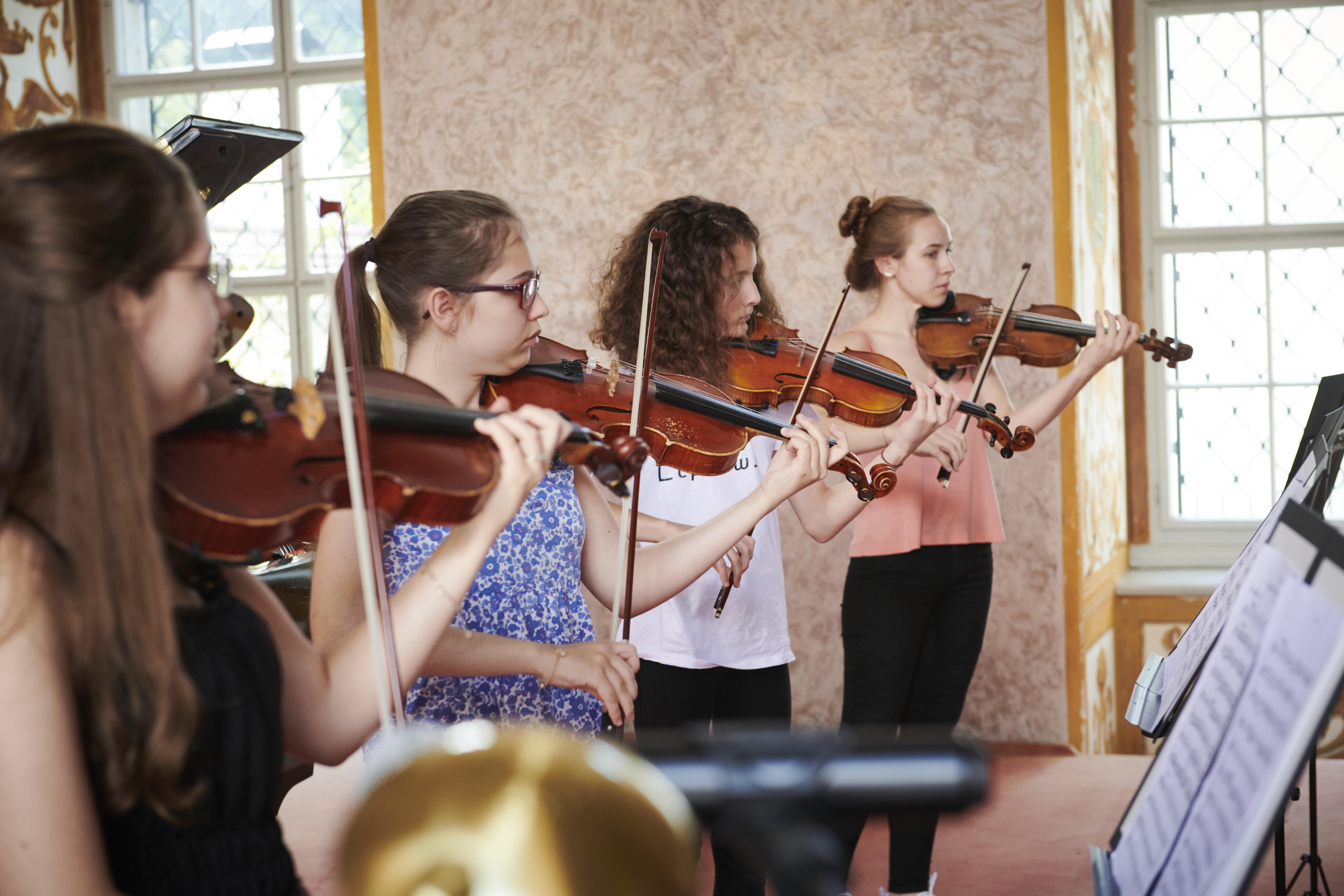 Violinen-Quartett